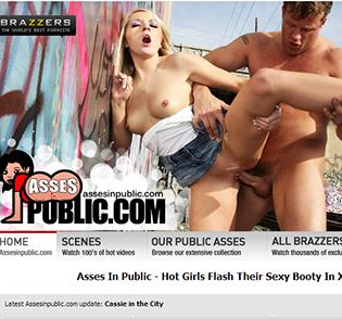 Asses In Public