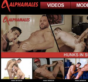 One of the finest premium gay sites to acces top notch gay material