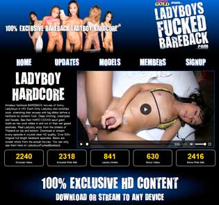 Top premium xxx site for the lovers of ladyboy porn stuff