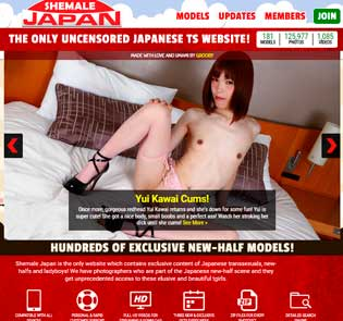 Greatest pay adult site full of hot japanese transsexual porn contents